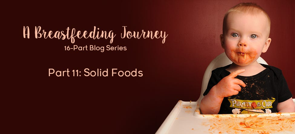 Part 11: Solid Foods