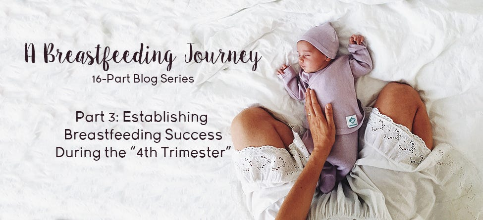 "Part 3: Establishing Breastfeeding Success During the ""4th Trimester"""