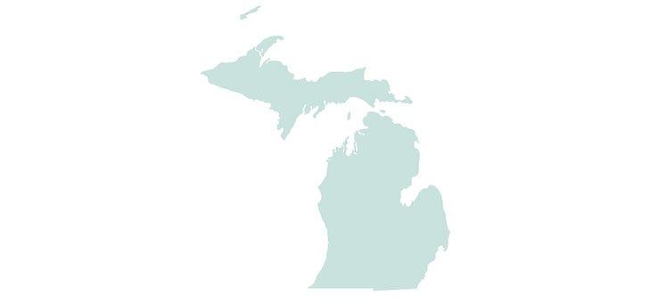 Michigan Medicaid