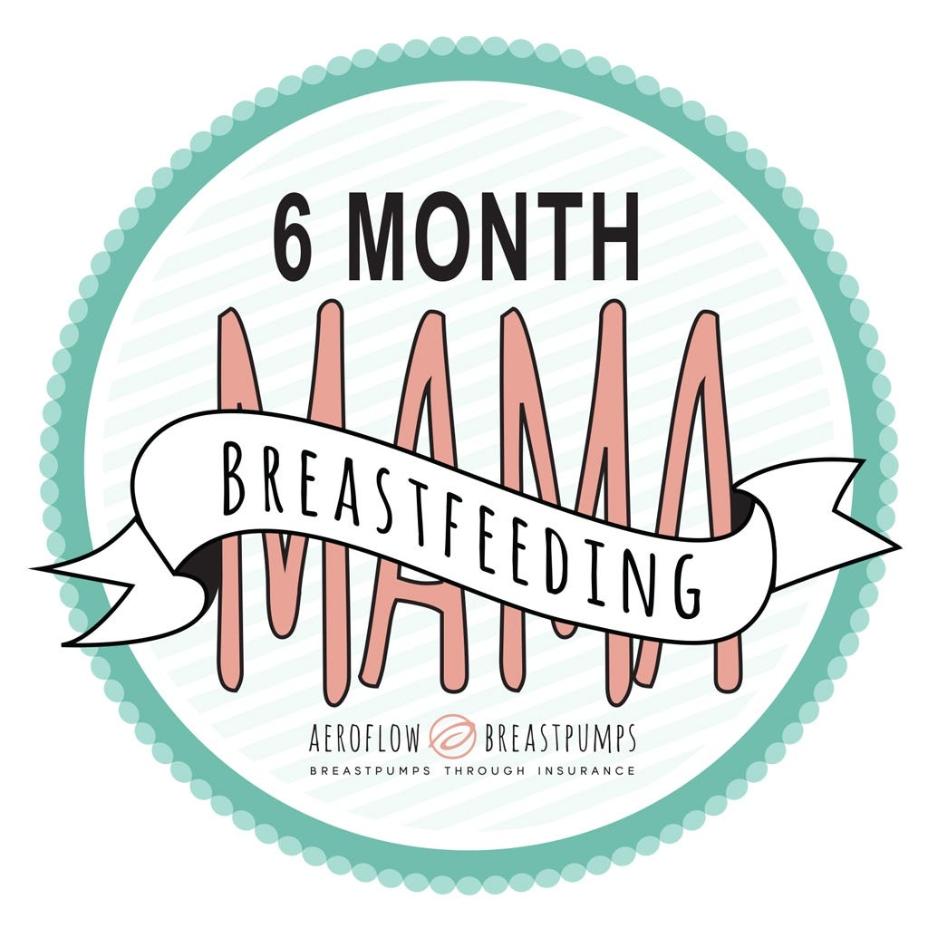 6 Month Breastfeeding Mama
